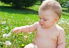 Enfant en bas âge jouant avec des pissenlits images stock
