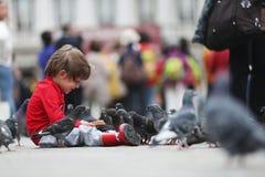 Enfant en bas âge parlant avec les pigeons Photographie stock