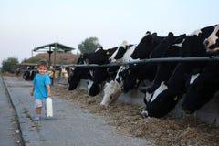 Enfant en bas âge portant son lait de ferme Photos stock