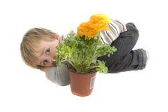 Enfant en bas âge timide avec les fleurs mises en pot Image stock