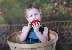 Enfant en bonne santé Image libre de droits