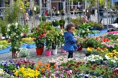 Enfant entouré avec des fleurs sur la rue Image stock