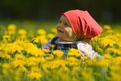 Enfant entre les fleurs jaunes Photographie stock libre de droits