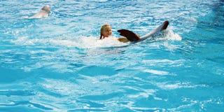 Enfant et dauphins heureux dans l'eau bleue Photos libres de droits