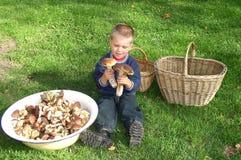 Enfant et nature photographie stock