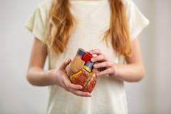 Enfant futé mignon tenant un modèle d'organe humain images stock
