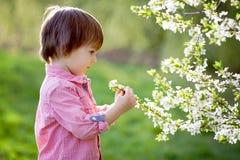 Enfant heureux adorable dehors la journée de printemps Photographie stock libre de droits