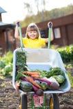 Enfant heureux avec les légumes remplis par brouette image stock