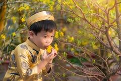 Enfant heureux ayant l'amusement avec la robe traditionnelle ao Dai dans l'Ochna dedans Photos libres de droits