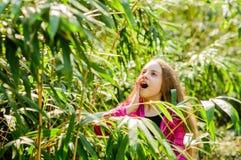 Enfant heureux en stationnement enfant étonné dans la jungle Concept de d?placement Nature d'?t? Beaut? normale Bonheur d'enfance photos libres de droits