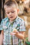 Enfant intéressé avec l'oiseau de bébé Photo libre de droits