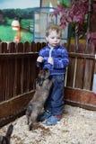 Enfant jouant avec des lapins Images stock