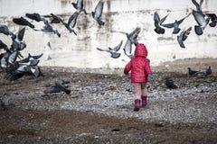 Enfant jouant avec des oiseaux Images stock
