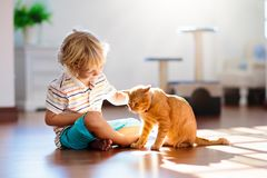Enfant jouant avec le chat ? la maison Enfants et animaux familiers photo libre de droits