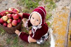Enfant mangeant des pommes dans un village en automne Petit jeu de bébé garçon photographie stock libre de droits