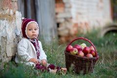Enfant mangeant des pommes dans un village en automne Petit jeu de bébé garçon images libres de droits