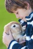 Enfant masculin de garçon jouant avec le lapin d'animal familier image stock