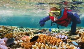 Enfant naviguant au schnorchel dans l'Australie de la Grande barrière de corail Queensland photographie stock