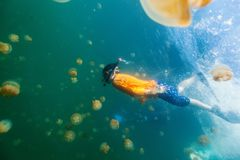 Enfant naviguant au schnorchel dans le lac jellyfish Image stock