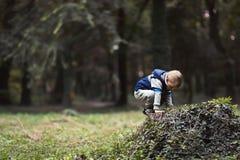 Enfant s'élevant en parc image stock