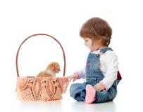 Enfant s'asseyant par le panier avec des chatons, Photos libres de droits