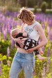 Enfantez allaiter son bébé dans un domaine des fleurs pourpres Photos stock