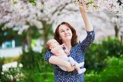 Enfantez avec ses 2 mois de bébé appréciant la saison de fleurs de cerisier Photo libre de droits