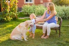 Enfantez tenir le fils de bébé et jouer avec le chien de Labrador en parc Photo libre de droits