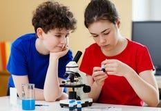 Enfants à l'aide du microscope Photographie stock libre de droits