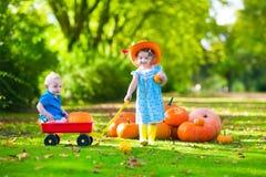 Enfants à la correction de potiron de Halloween Images libres de droits