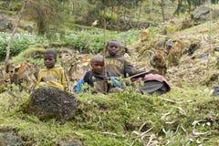 Enfants africains au Rwanda Photo libre de droits