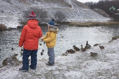 Enfants alimentant des canards Photo stock
