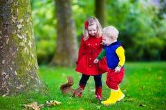 Enfants alimentant l'écureuil en parc d'automne Photos stock