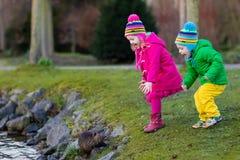 Enfants alimentant la loutre en parc d'automne Photographie stock