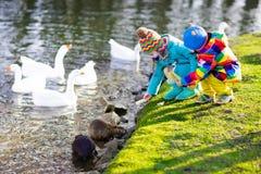 Enfants alimentant la loutre en parc d'automne Photographie stock libre de droits