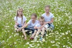 Enfants assis dans le pré entre les marguerites Photographie stock libre de droits