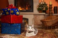Enfants avec des cadeaux par la cheminée Images stock