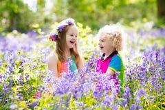 Enfants avec des fleurs de jacinthe des bois, outils de jardin Photo libre de droits