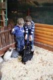 Enfants avec des lapins Photographie stock