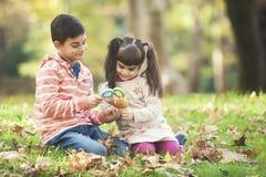 Enfants avec des loupes en parc Photos stock