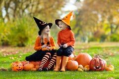 Enfants avec des potirons dans des costumes de Halloween image libre de droits