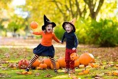 Enfants avec des potirons dans des costumes de Halloween photos libres de droits