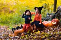Enfants avec des potirons Halloween Photo libre de droits