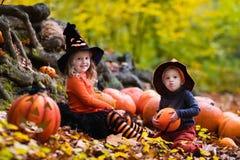 Enfants avec des potirons Halloween Photos stock