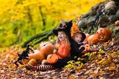 Enfants avec des potirons Halloween Image libre de droits