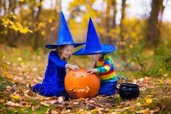 Enfants avec des potirons Halloween Image stock