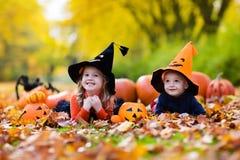 Enfants avec des potirons Halloween Photo stock