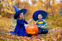 Enfants avec des potirons Halloween Photographie stock