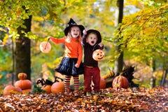 Enfants avec des potirons Halloween Photographie stock libre de droits