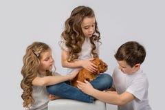 Enfants avec le chiot rouge d'isolement sur le fond blanc Amitié d'animal familier d'enfant Image libre de droits